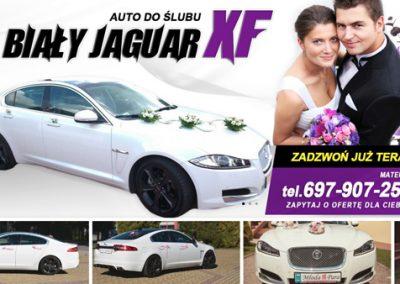 Biały Jaguar XF