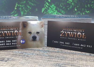hodowla psów wizytówka